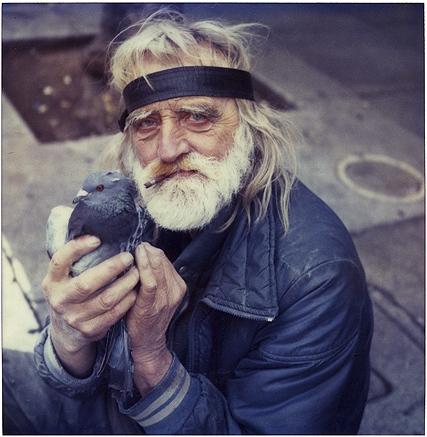 old man bird